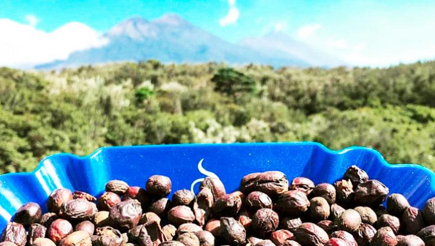 alimentos en Guatemala