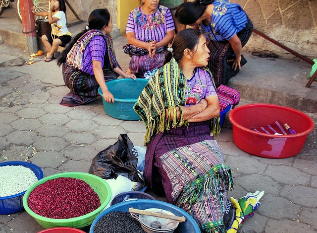 bosch gutierrez y guatemala