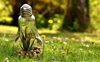 foco-representando-energía-natural